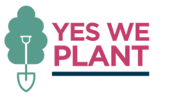 Yes we plant : 4000 km de haies et 1 million d'arbres pour la Wallonie